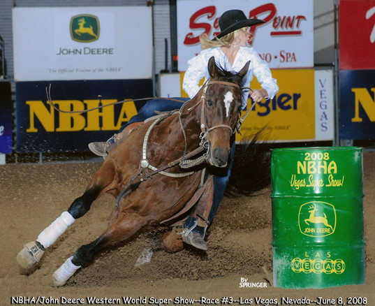 Streakin Days Barrel Horse RGR Horses