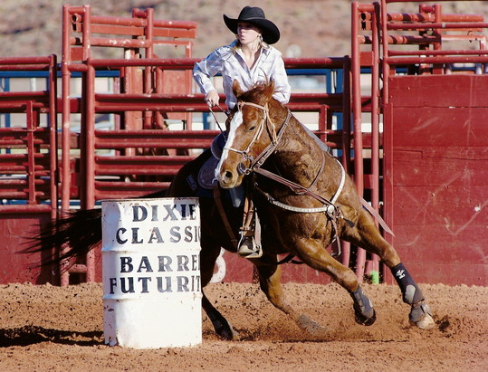 RGR Barrel Horse Rainbow Glass Ranch